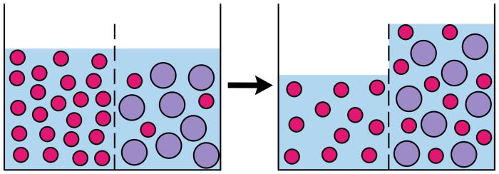 Osmosis (scheme)