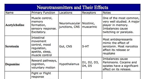 Neurotransmitters And Their Effects Chart - NCLEX Quiz