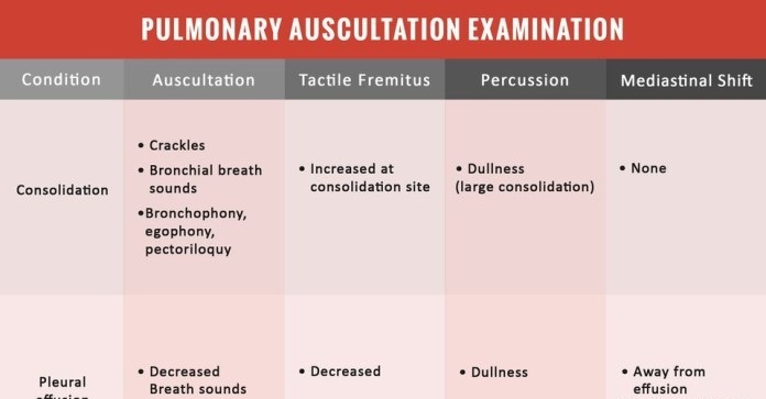 pulmonary auscultation examination cheat sheet