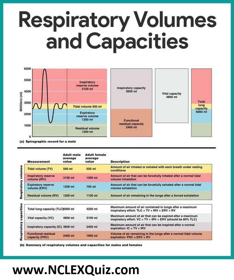 Summary of Respiratory Volume and capacity for Males and Females