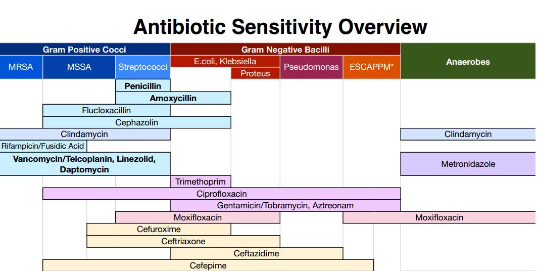 Antibiotic Sensitivity Overview Cheat Sheet - NCLEX Quiz